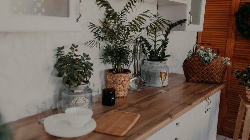Traiter un mobilier en bois contre les insectes